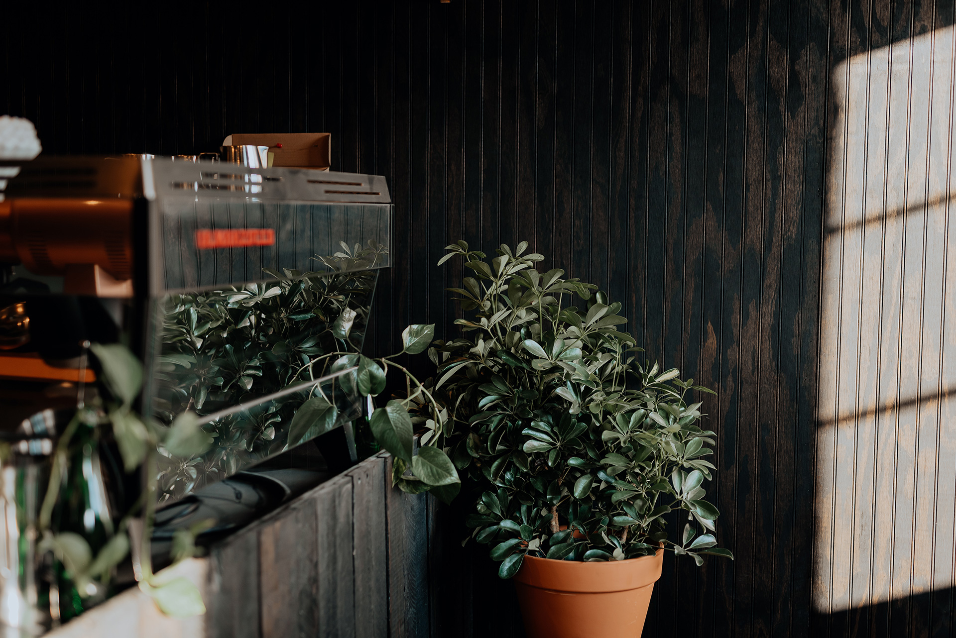 recluse roasting project richmond virginia